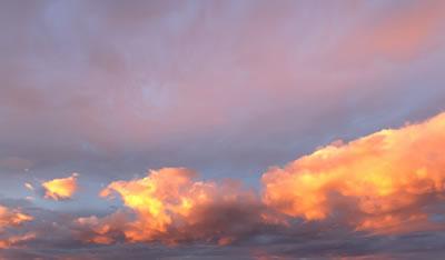 東海大熊本星翔が35年ぶり2度目の甲子園